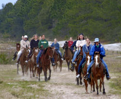 Horseback Riding On The Beach In Melbourne Florida